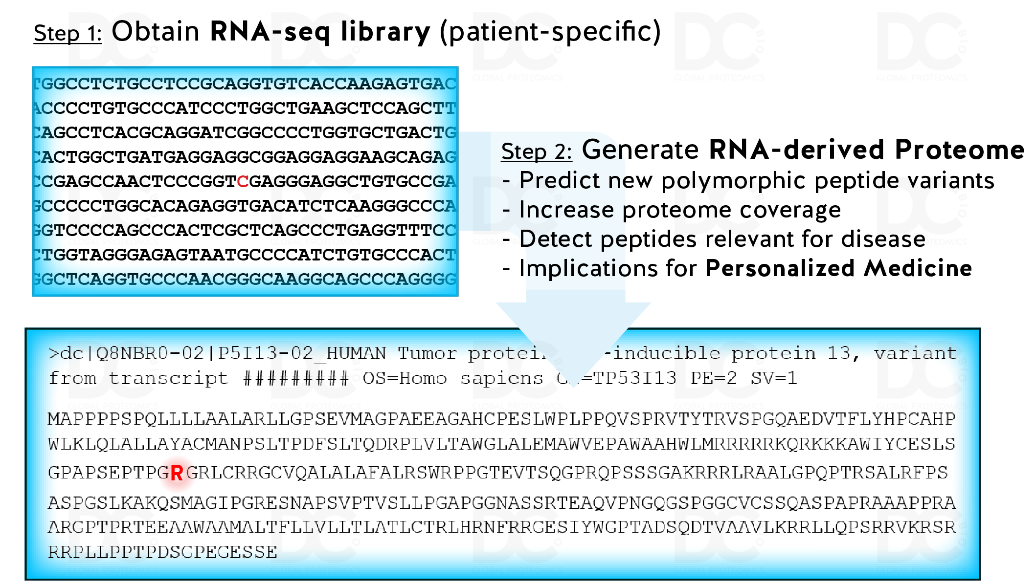 Proteome_from_RNA